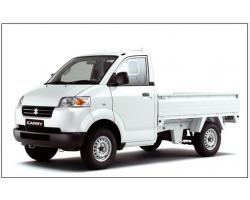 SUZUKI CARRY PRO 750KG TL